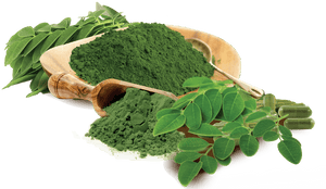 Health Benefits of Moringa Oleifera - Co Chocolat