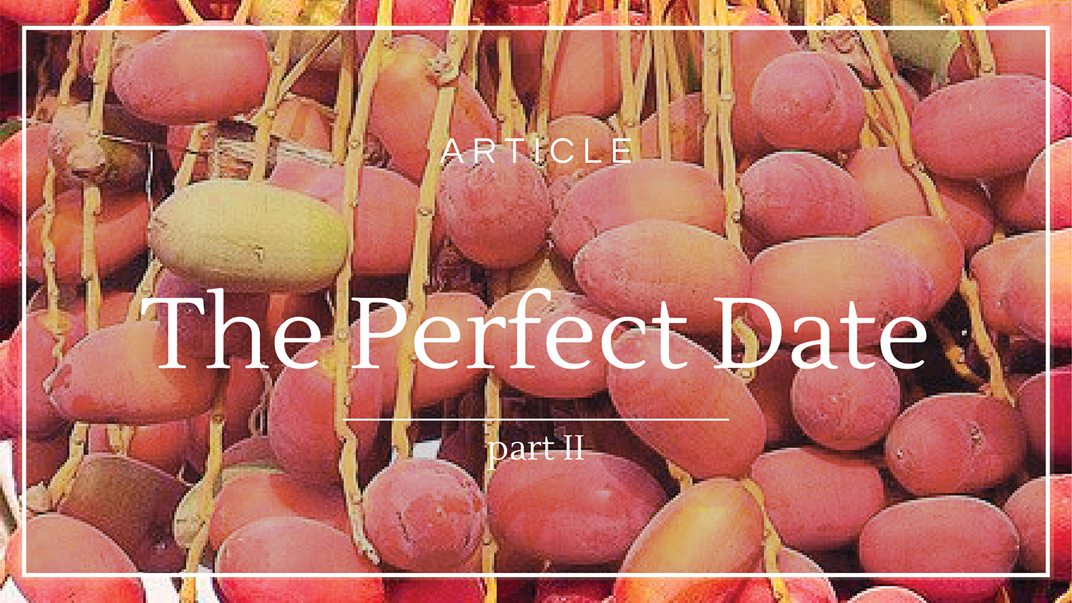 Co Chocolat Blog: The Perfect Date (Part 2)