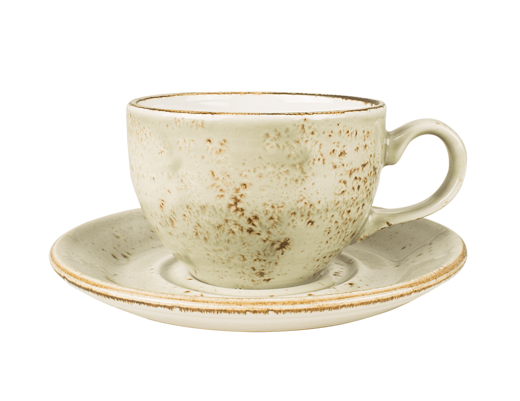 Steelite Cup and Saucer