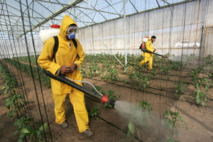 Is Poisonous Farming Affecting Your Health?