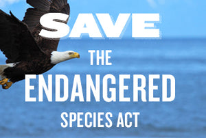 Bring Back The Endangered Species Act