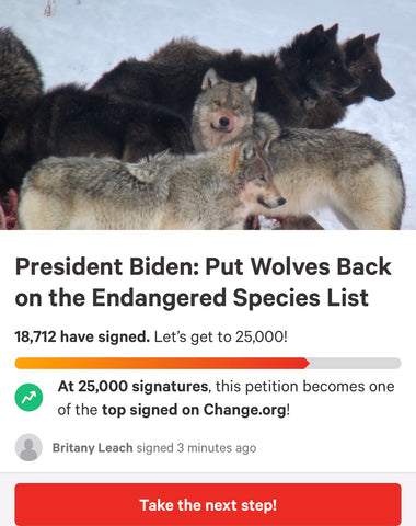 Sign the petition to Save the wolves on change.org
