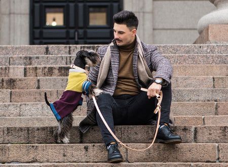 How to keep Your Dog Stylish and Warm during Winter