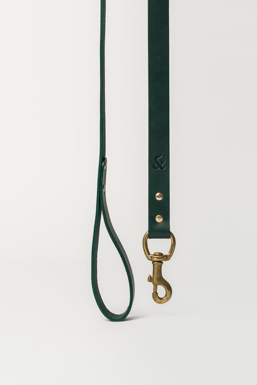 Leather Dog Lead, Green - allwaggers.com