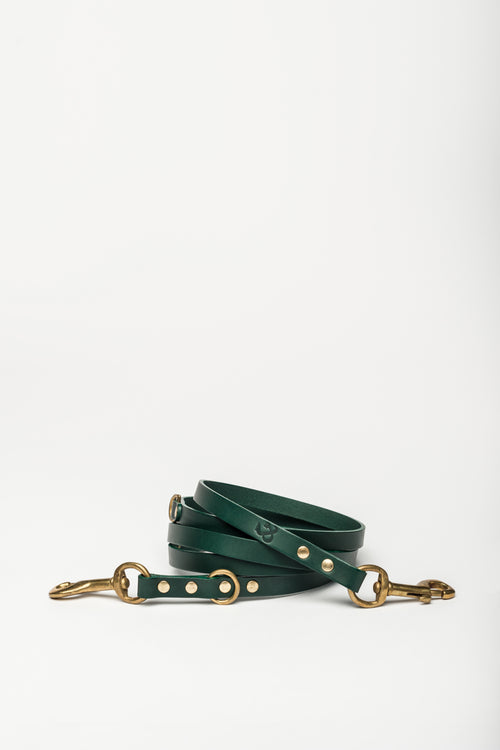 Long Leather Dog Lead, Green - allwaggers.com