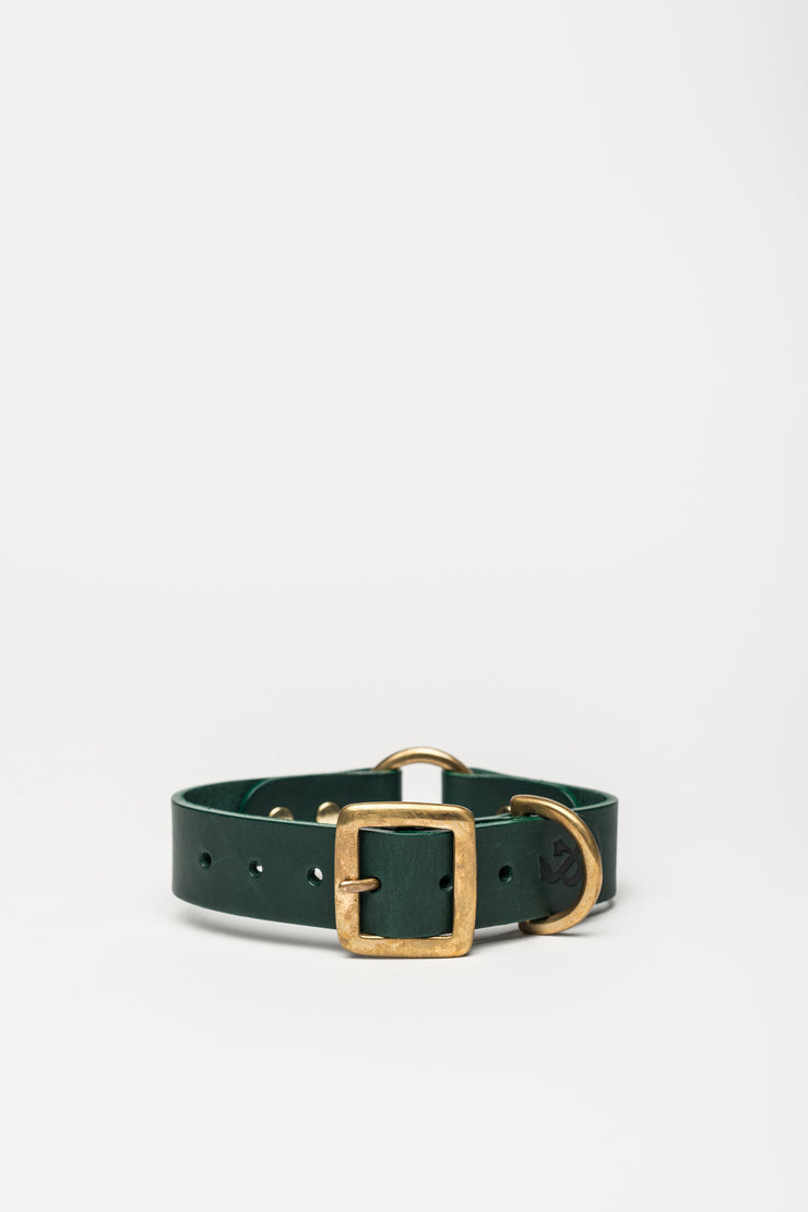 Leather Dog Collar, Green - allwaggers.com