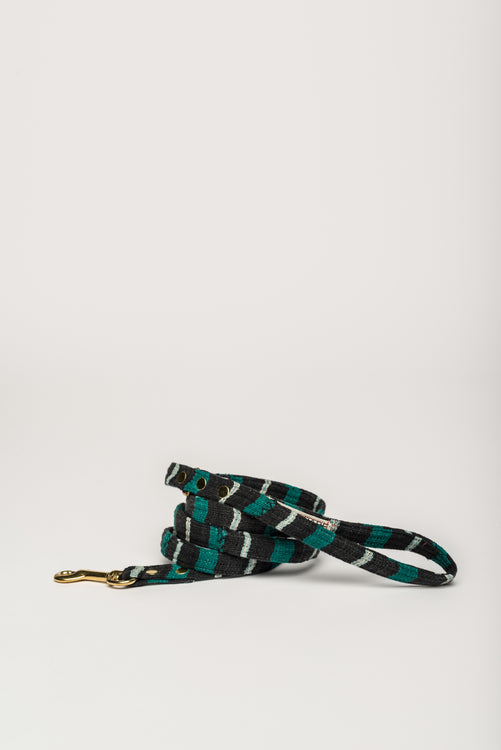 Ivory Coast Leash - allwaggers.com