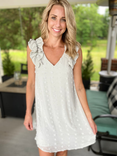 Swiss Dot Silver Dress