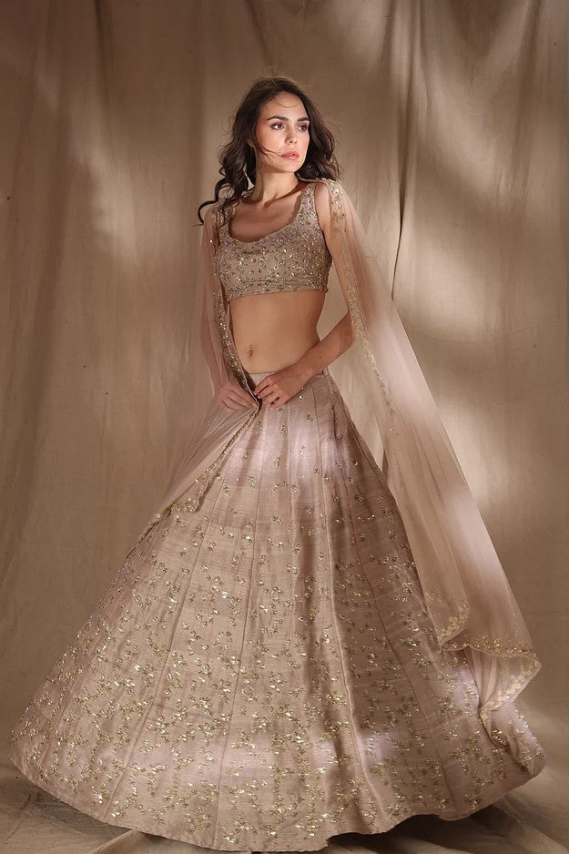 Grey Brown Raw Silk Lehenga Set