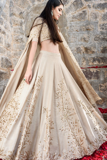 Champagne and Gold Slant Leaf Lehenga