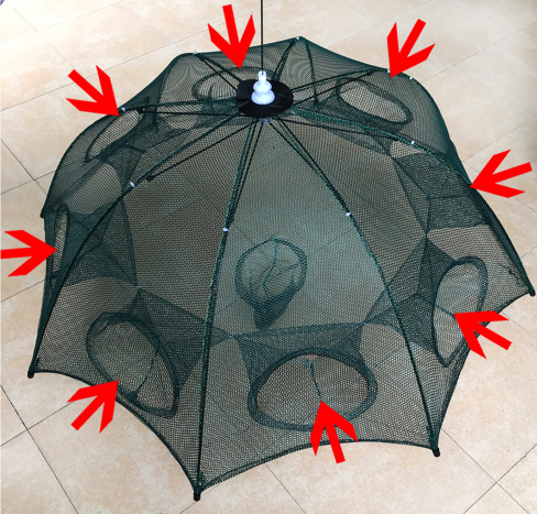 Umbrella Trap