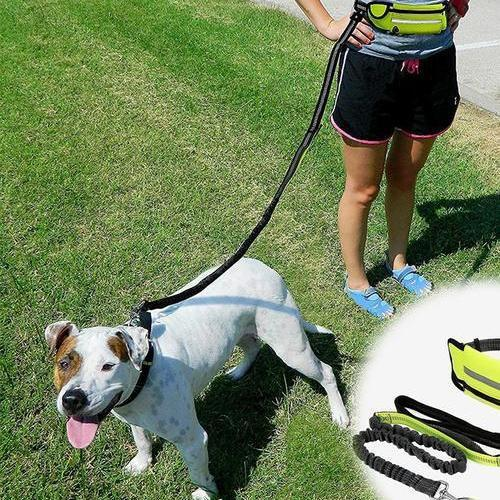 Hands-Free Dog Leash & Pouch