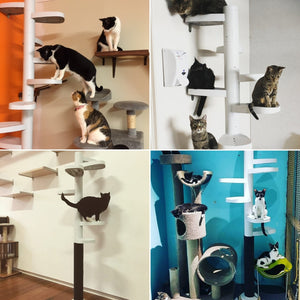 Monkee Tree's are now in 6 Cat Cafes across Australasia
