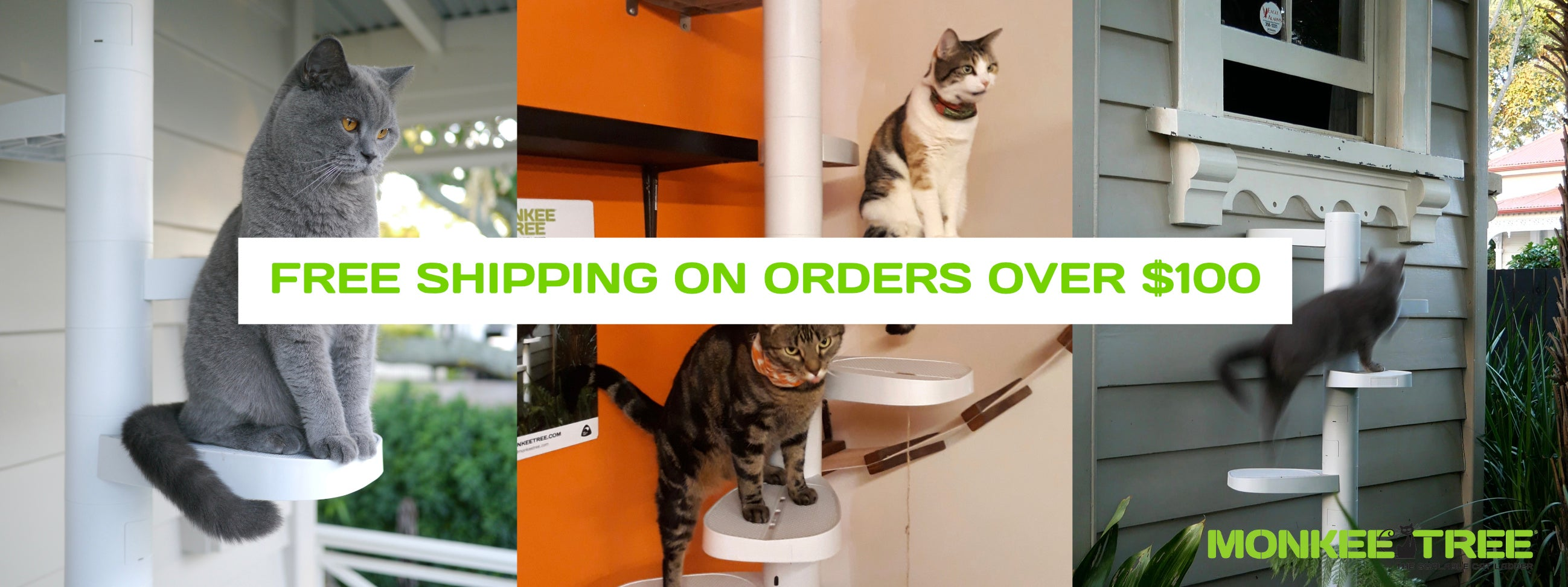 monkee tree adjustable cat ladder