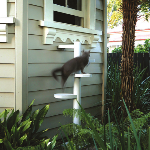 Access an open window with a  Monkee Tree cat ladder
