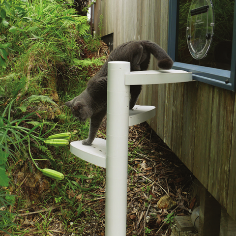 Reach an elevated catdoor