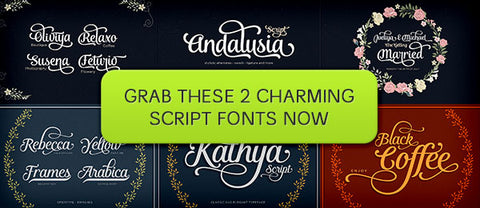 2 Charming Script Fonts (Including Web Fonts) - Only $20 - MyDesignDeals