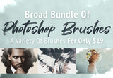 Broad Bundle Of Photoshop Brushes- Only $19 - MyDesignDeals
