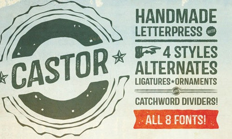 Complete Castor Font Family (Plus Web Fonts) - Only $19 - MyDesignDeals