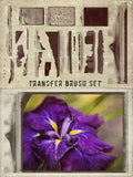 Unique Film Transfer PSDs, Brushes, and Textures from 2LilOwls - Only $30 - MyDesignDeals
