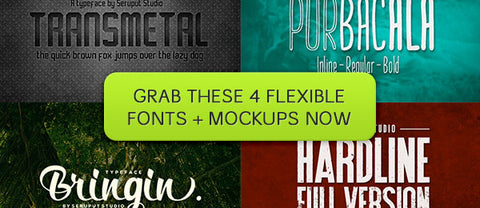 Four Flexible Fonts (Plus Bonus Presentation Mockups) - Only $19 - MyDesignDeals