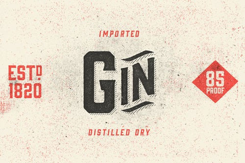Gin Font Family with 8 Different Members - Only $19 - MyDesignDeals