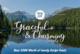 28 Charming & Graceful Script Fonts - Just $39 - MyDesignDeals
