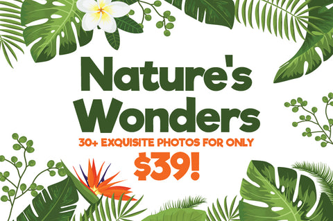Nature's Wonders - Exquisite Photos, ~$1/Each -- Bundle for Only $39