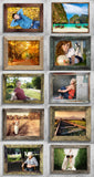56 Easy to Use Photo Frames - Only $17 - MyDesignDeals