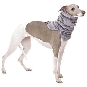 RAFAEL snood for hund