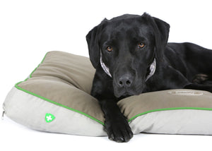 Insect Shield® hundemadrass