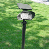 High Quality Solar Spot Light