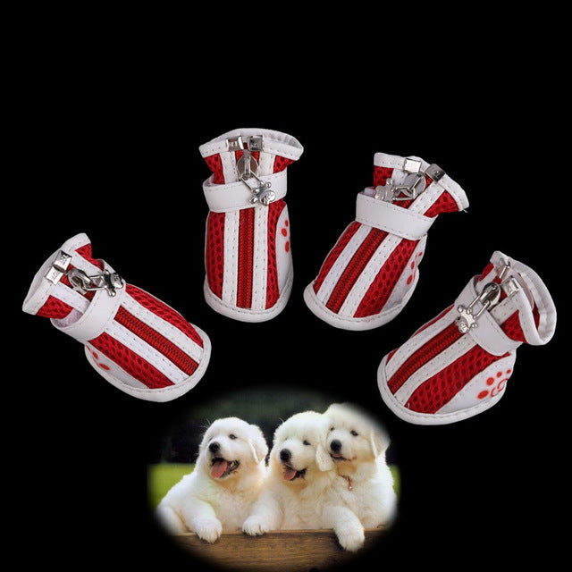 Booties Sneakers Puppy Sport Shoes
