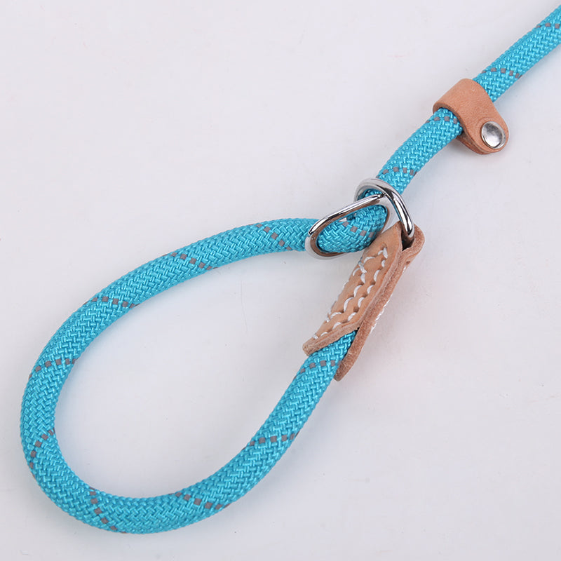 Lead Basic Leash