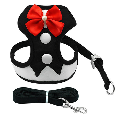 Elegant Bow Dog Harness Nylon