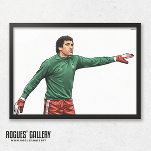 Peter Shilton Nottingham Forest goalkeeper goalie NFFC City Ground A3 print