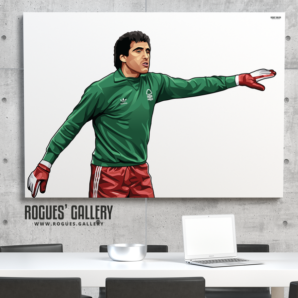 Peter Shilton Nottingham Forest goalkeeper goalie NFFC City Ground poster