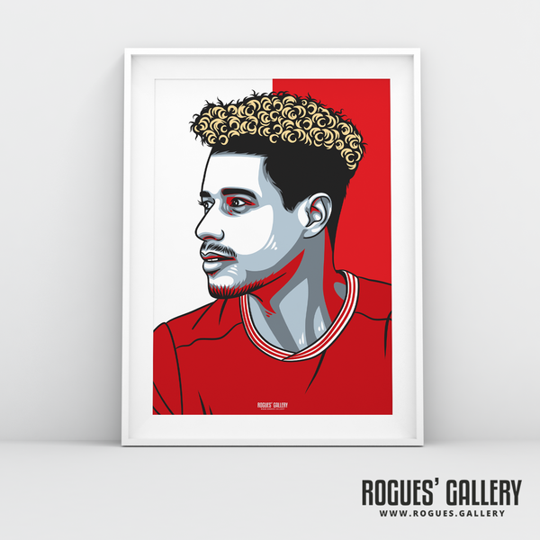 Lyle Taylor striker Nottingham Forest FC The City Ground NFFC A3 print