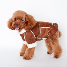 Small Dog Coat