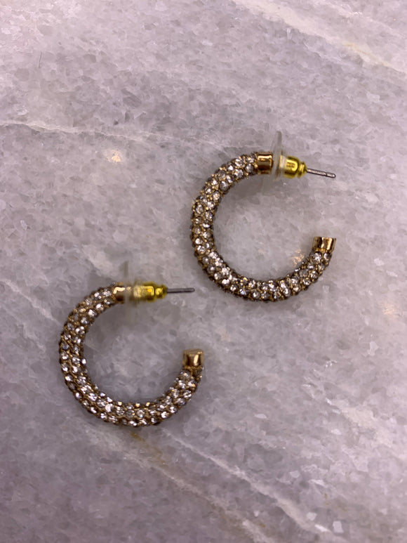 Hoop Earring With Diamonds