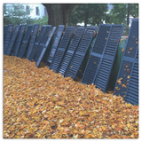 Blue Shutters on Autumn Leaves