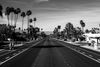 Palm Springs Road By Michael J Paddon