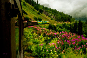 Skagway Rail with a View