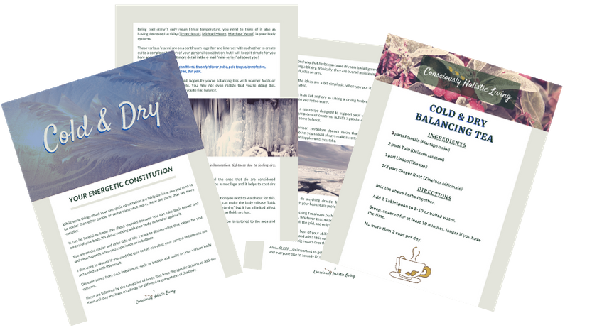 Elemental Promise -  Cold & Dry Constitution PDF | Consciously Holistic Living | All-Natural Body Care Products