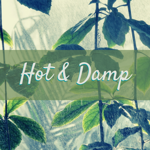 Elemental Promise -  Hot & Damp Constitution Balancing Tea | All-Natural Body Care Products