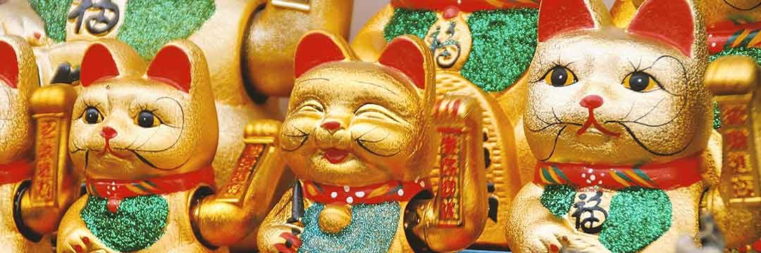 Lucky Cat and the Zenism Terms and Conditions
