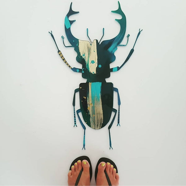 Mr Beetle - Large