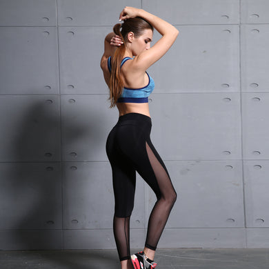Vertvie Mesh Leggings - The Gym Stop