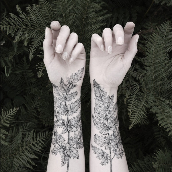 Fern and Crystal Temporary Tattoo Set - My Modern Met Store