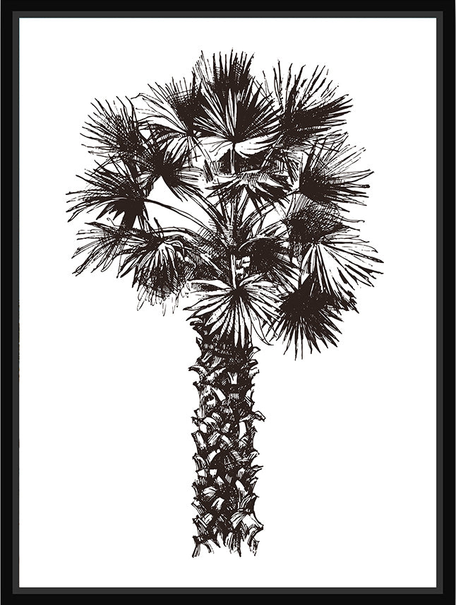 Palm Floating Frame